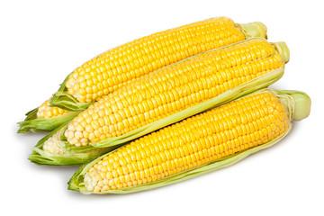 corn ear heap