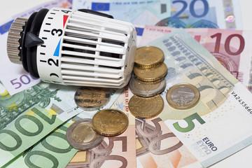 Heizungsthermostat und Geld, Heizkosten