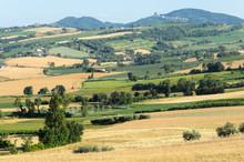 Wsi Romagna