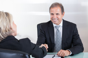 Businessman And Businesswoman Shaking Hand