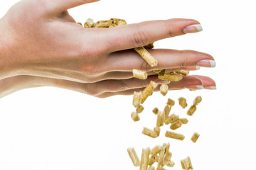 Hand mit Pellets als alternatie Energie