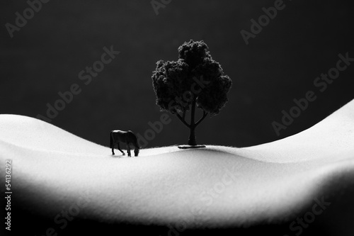 Landscape Bodyscape Image of a Woman