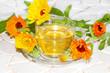 Pot marigold or Calendula officinalus
