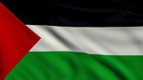 Flag of Palestine looping