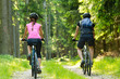 Bikers in forest cycling on track