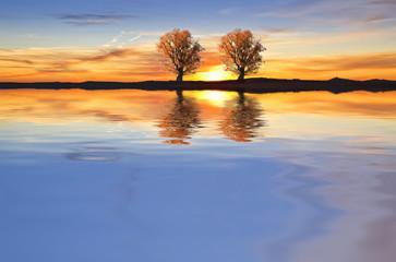 colores en el lago