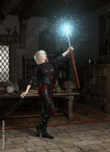 The Mage's Staff