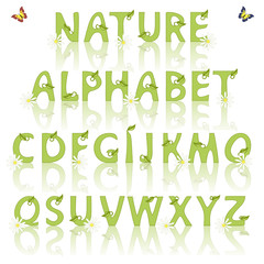 Nature alphabet with leaves. Vector illustration
