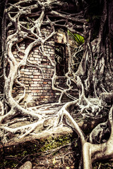Ruin of abandoned building on Ross Island.Andaman Islands,India