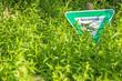 Naturdenkmal Schild versteckt im Grünen