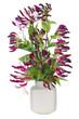 Minimalistic purple floral composition