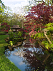 Japanese garden with a red bridge , The Hague, Holland