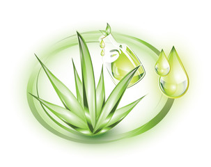 Essential oil from Aloe Vera