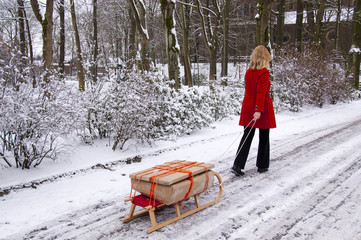 Transporting packages on a sledge