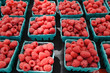 Organic Raspberries at Farmers Market