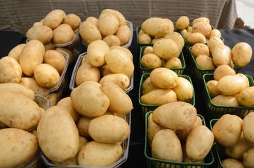 Organic Potatoes at Farmers Market