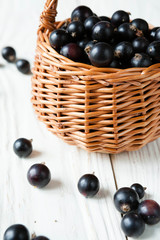 black currants in a wicker basket