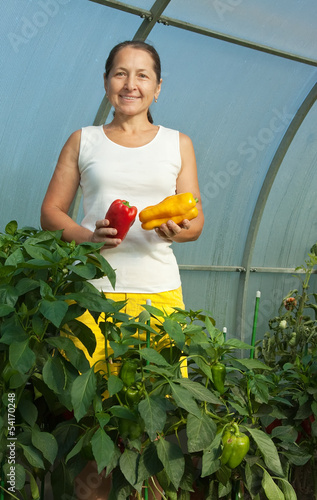 woman  picking   pepper
