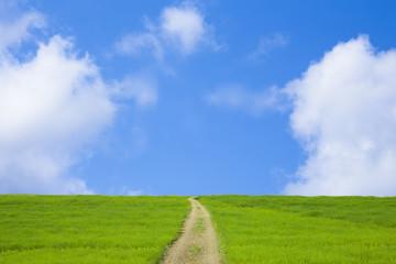 草原と青空と道