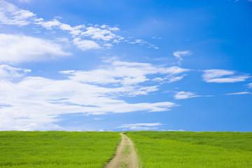 草原と道と青空