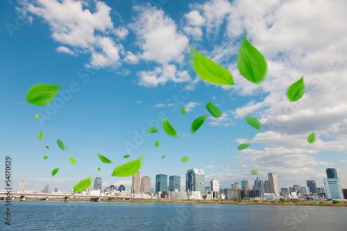 舞い散る葉っぱと大阪のビル群