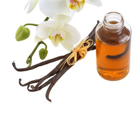 Vanilla pods, flower and bottle