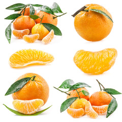 Collection of Tangerines isolated on white