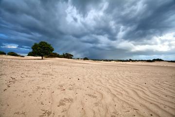 dark stormy clouds over sand dunes