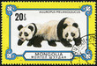 stamp printed in Mongolia shows two giant pandas