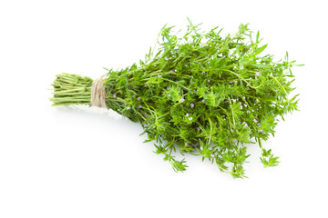 Bunch of fresh Thyme herbs /  isolated on white