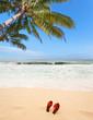 plage de sable doré aux Seychelles