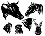 on the farm design set - black and white animals