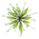 top view bouquet of lilies in glass vase isolated on white backg