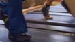 HD720p50 Treadmill in gym