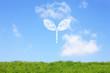 草原と双葉の雲