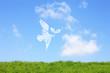 草原と鳥と双葉