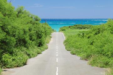 来間島の道