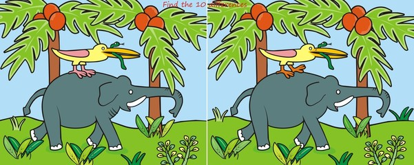 Elephant-10 difference