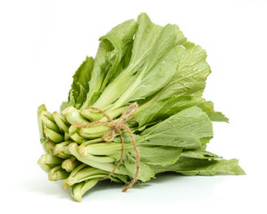 A bunch of Chinese cabbage isolated on white background