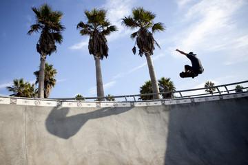Skater in the skate park in Venice Beach