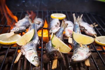 Grillet sardines