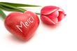 Herz und Tulpe