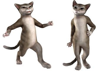 Zwei Katzen in verschiedenen Posen 03