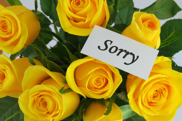Sorry note and yellow roses