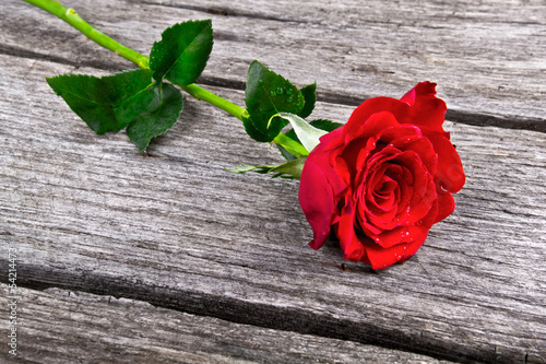 Red Rose on old wooden plank love concept