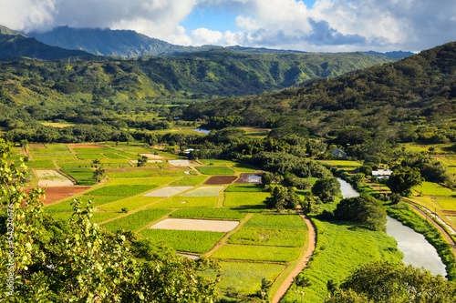 Hanalei Valley in Kauai