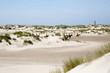 Leinwanddruck Bild - Dünenlandschaft auf Norderney, Deutschland