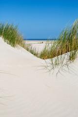Dünenlandschaft auf Norderney, Deutschland