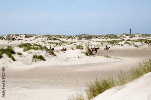 Leinwanddruck Bild Dünenlandschaft auf Norderney, Deutschland