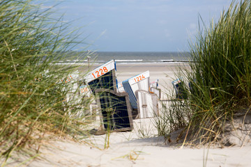 Strandkörbe und Dünengras am Strand von Norderney, Deutschland